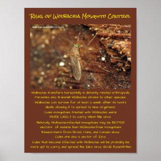 Riesgos del control del mosquito de Wolbachia por Póster