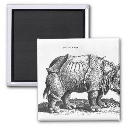 Rinoceronte, de 'Historia Animalium Imán
