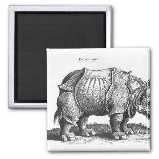 Rinoceronte, de 'Historia Animalium Imán Cuadrado
