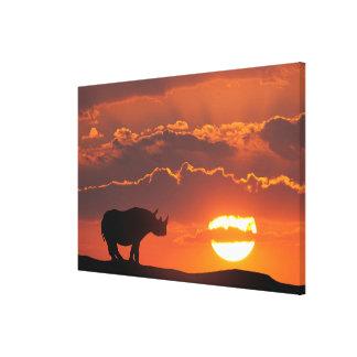 Rinoceronte en la puesta del sol, Masai Mara, Lienzo