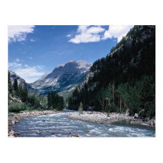 Río de Animas en las montañas de San Juan, Colorad Tarjetas Postales