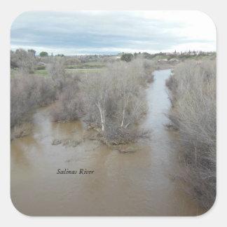 Río de las salinas al norte del puente del pegatina cuadrada