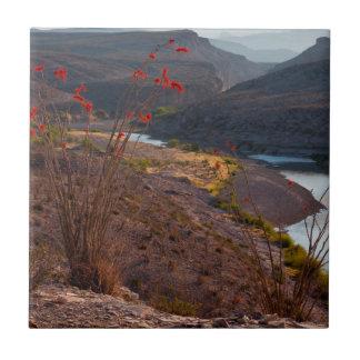 Rio Grande que corre a través del desierto de Azulejo Cuadrado Pequeño