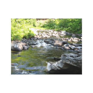 Río Impresión En Lienzo