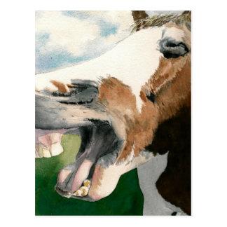 Risa de caballo postal