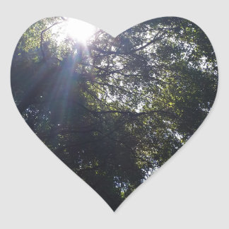 Roble Gnarly Pegatina En Forma De Corazón