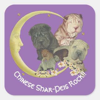 ¡Roca de los perritos de Shar-Pei del chino!! en Pegatina Cuadrada