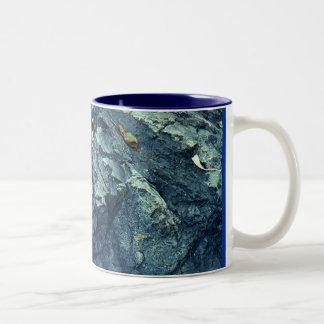 Roca y hojas taza de dos tonos