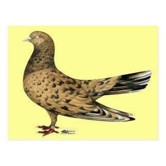 Rodillo oriental que vuela:  Almendra Postal