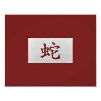 Rojo chino de la serpiente de la muestra del foto