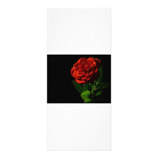 rojo-rosa-macro-aún-imagen-estudio-foto tarjeta publicitaria