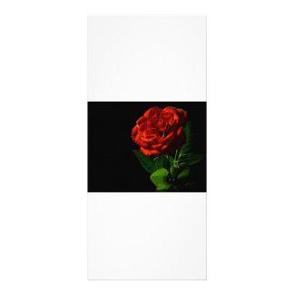 rojo-rosa-macro-aún-imagen-estudio-foto tarjetas publicitarias a todo color