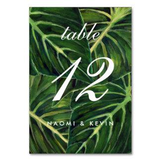Romance tropical/tabla no tarjeta