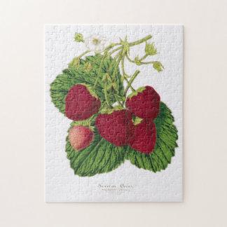 Rompecabezas antiguo de la impresión de la fresa