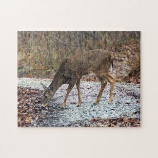 Rompecabezas Blanco-Atado de los ciervos