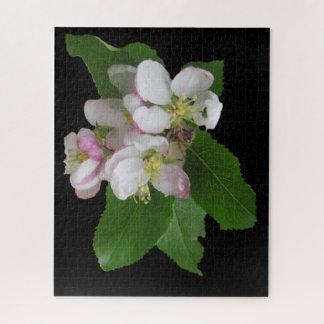 Rompecabezas blanco rosado de las flores de Apple
