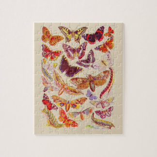 Rompecabezas de la placa de libro de las mariposas