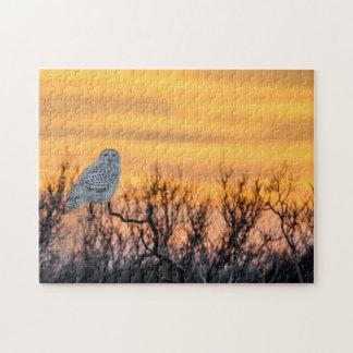 Rompecabezas de la puesta del sol del búho Nevado
