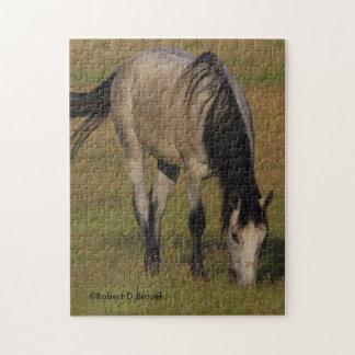 ROMPECABEZAS del caballo de Kansas