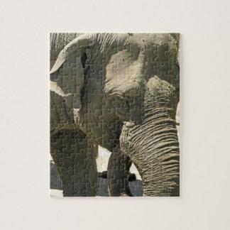 Rompecabezas del diseño del elefante