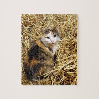 Rompecabezas del gato de la granja