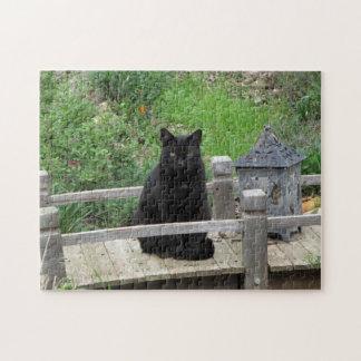 Rompecabezas del puente del gato negro
