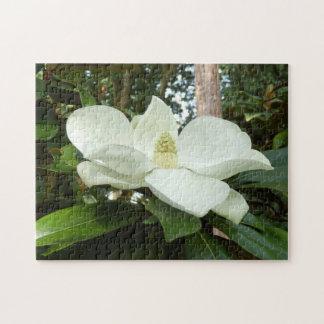 Rompecabezas grandiflora de la foto de la magnolia