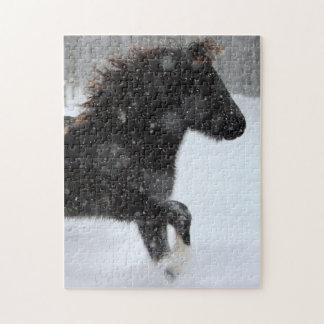 Rompecabezas islandés de la silueta del caballo