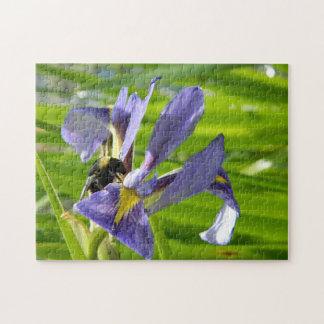 Rompecabezas púrpura del iris