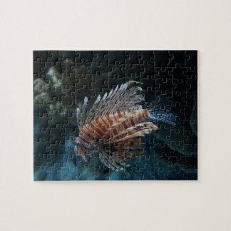 Rompecabezas rojo del Lionfish