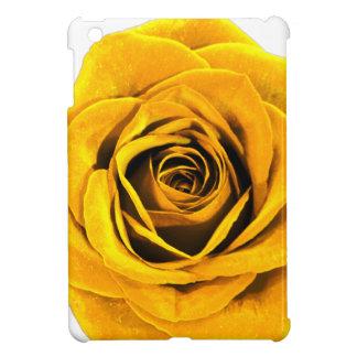 Rosa amarillo de oro 20171027b