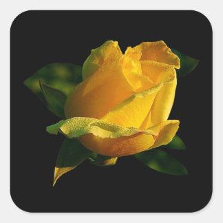 Rosa amarillo grande pegatina cuadrada