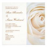 Rosa blanco de marfil clásico que casa Invitiation Anuncio