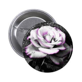 Rosa blanco de ruborización pin