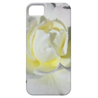 Rosa blanco y amarillo iPhone 5 cobertura