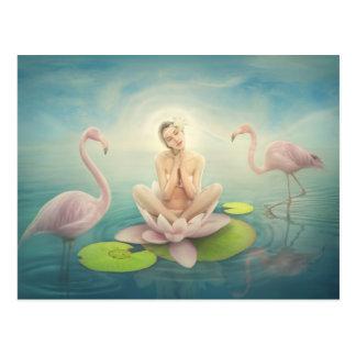 rosa claro lilly blanco de hadas recién nacido del postales