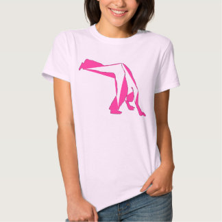 Rosa del compasso del capoeira de la camisa