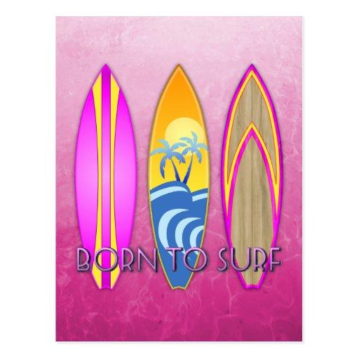 Rosa llevado para practicar surf tarjetas postales