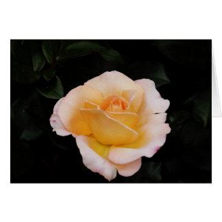 rosa naranja tarjeta de felicitación