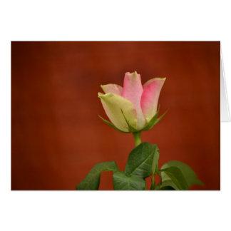 Rosa - postal tarjeta de felicitación