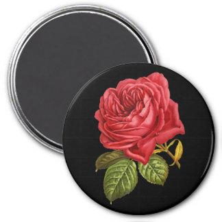 """Rosa rojo 3"""" imán redondo"""