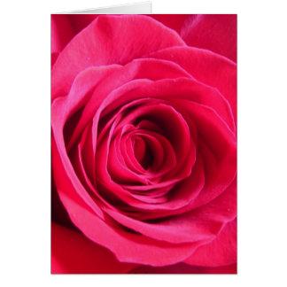 Rosa rojo * amor tarjeta de felicitación