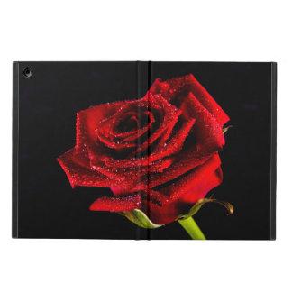 Rosa rojo hermoso