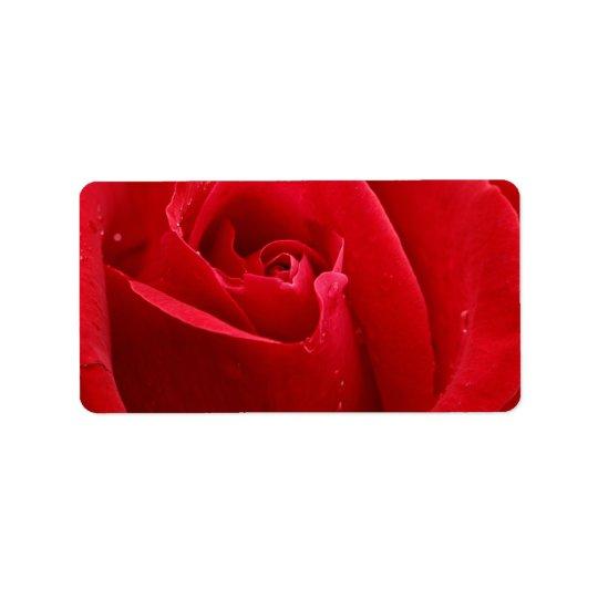 Rosa rojo romántico etiquetas de dirección