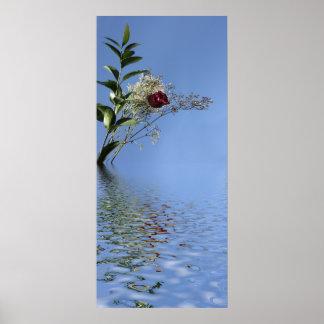 Rosa rojo y reflexión impresiones