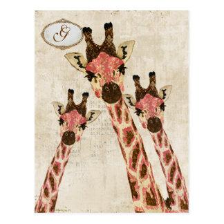 Rosa y postal de cobre del monograma de las jirafa