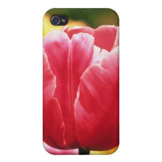 """Rosado escoja los últimos tulipanes, las flores """"s iPhone 4 cárcasa"""