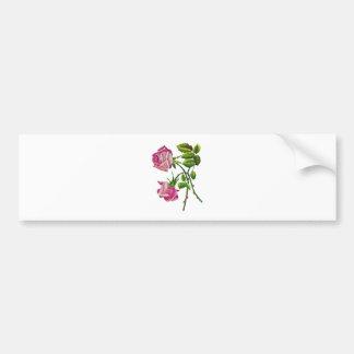 Rosas americanos rosados de la belleza en bordado etiqueta de parachoque