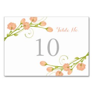 Rosas coralinos del jardín - tarjeta del número de