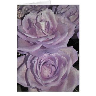 Rosas de la lavanda tarjeta de felicitación